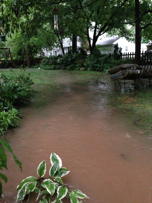 This is my yard with the flash flooding.