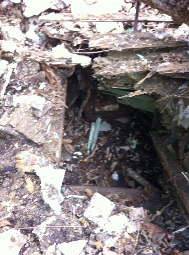 this is where they were found. this is the hole Amy dug.